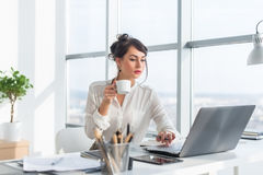 Young female business person working in office using laptop, reading and searching information attentively, drinking Stock Photography