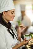 Young female chef smelling herb Royalty Free Stock Image