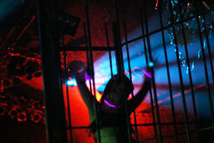 Young female dancer. Dancing in a steel cage stock photography