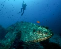 A Young Female Diver Shines a Light on a Small Underwater Wreck off of Catalina Island in California stock images
