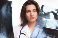 A young female doctor is examining the x-rays Royalty Free Stock Photo