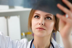 Young female doctor looking at lungs x-ray Royalty Free Stock Image