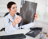 Young female doctor looking at X-ray. In her living room Royalty Free Stock Image