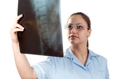 Young female doctor looking at x-ray picture Royalty Free Stock Photography