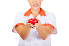 Young female doctor or nurse holding toy heart.  stock image