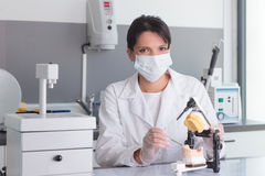 Young female doctor working on dental prosthesis laboratory Royalty Free Stock Images