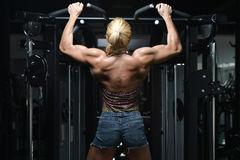 Young Female Doing Back Exercises In The Gym Stock Photography