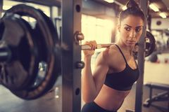 Young female doing exercise with barbell. In fitness club stock images