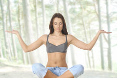 A young female is doing yoga exercise Royalty Free Stock Photos