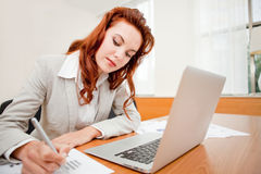 Young female entrepreneur Stock Photography