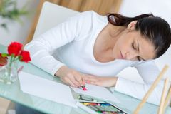 Young female entrepreneur working at desk Stock Images