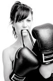 Young female fighter on white background Royalty Free Stock Images