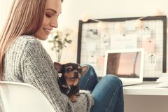 Young woman freelancer indoors home office concept winter atmosphere sitting with puppy. Young female freelancer at home office winter sitting holding toy Stock Images