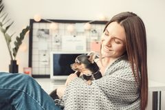 Young woman freelancer indoors home office concept winter atmosphere with puppy. Young female freelancer at home office winter sitting hugging toy terrier dog Stock Photos