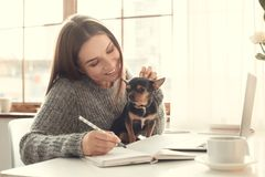 Young woman freelancer indoors home office concept winter atmosphere with toy terrier Stock Photography