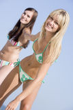 Young female friends on beach holiday Stock Photography