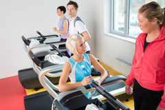 Young female friends chatting in fitness center Stock Photography