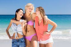 Young female friends enjoying on beach Stock Image