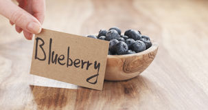 Young female hand putting paper card near bowl of blueberries on table Stock Image