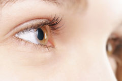 Young female hazel eye with contact lens Royalty Free Stock Photos