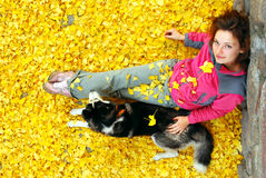 Young female and her dog in fallen leaves Royalty Free Stock Photography