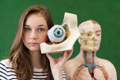 Young female high school student holding human eye model. Student in Biology class. Young female high school student holding human eye model. Student examining stock photo