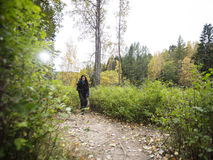 Young Female Hiker Walking On Forest Trail. Full length of young female hiker walking on forest trail Stock Photo