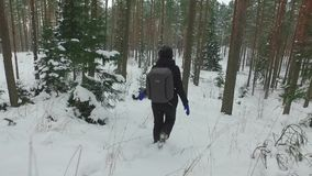 Young female hiking with a backpack in beautiful winter forest. Slow motion footage. Snowfall. Snowstorm. Nature landscape stock video