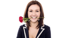 Young female holding rose between her teeth Royalty Free Stock Photo