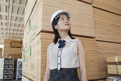 Young female industrial worker looking away with stacked wooden planks in background Royalty Free Stock Photography