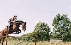 Young female jockey on horse leaping over hurdle Stock Photos