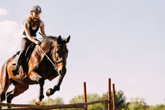 Young female jockey on horse leaping over hurdle Royalty Free Stock Photos
