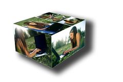 Young female with laptop box collage Royalty Free Stock Photography