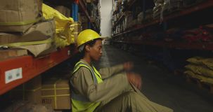 Young female male worker in a warehouse stock video