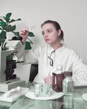 Young female microscopist selects a tissue sample Royalty Free Stock Photos