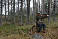 Young female moose hunter aiming. Sitting on a stump, picture from the North of Sweden stock photography