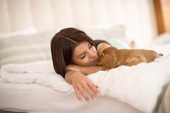 Female owner sleep with puppy pet. Young female owner sleep in bed with puppy pet royalty free stock photos