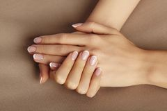 Young Female Palm. Beautiful Glamour Manicure. French Style. Nail polish. Care about Hands and Nails, clean Skin royalty free stock image