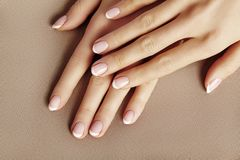 Young Female Palm. Beautiful Glamour Manicure. French Style. Nail polish. Care about Hands and Nails, clean Skin. Young Female Palm on beige background royalty free stock images
