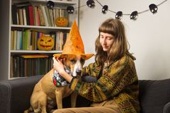 Young female person dresses dog as witch for halloween royalty free stock image