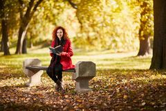 Young female reading book in park. Curly redhead young female reading book in park in autumn Stock Photography
