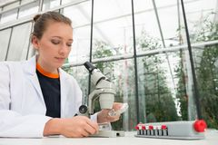 Young female researcher examining leaves under microscope at lab Stock Photos