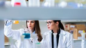 Young female researchers conducting laboratory test. Chemistry and medicine students working in a laboratory. Young female researchers doing lab tests stock photo