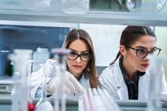 Young female researchers conducting laboratory test. Chemistry and medicine students working in a laboratory. Young female researchers doing lab tests royalty free stock images