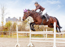 Young female rider on bay horse jump over hurdle. Young female rider on bay horse jumping over hurdle on equestrian sport competition Stock Photography