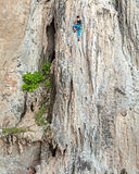 Young female rock climber. Stock Photos
