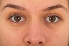 Young female`s brown eye stock photos