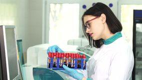 Young female scientist examining test tubes with blood samples. Attractive female young medical worker examining blood samples in test tubes while working at the stock video footage