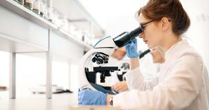 Young scientist looking through microscope in laboratory royalty free stock photos