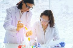 Young female scientist standing with techer in lab worker making. Medical research in modern laboratory. Scientist holding documents folder with analysis Stock Photos